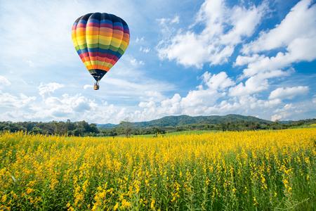 air view: Hot air balloon over yellow flower fields against blue sky