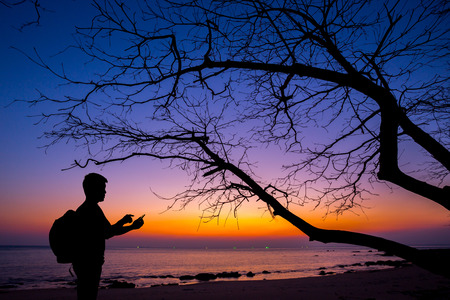Silhouette man using smartphone with dead tree and sunset beach background photo