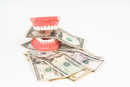 Dental model with US dollar