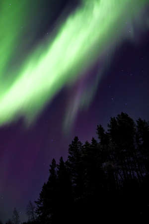 geomagnetic: Aurora borealis, White Sea, Russia