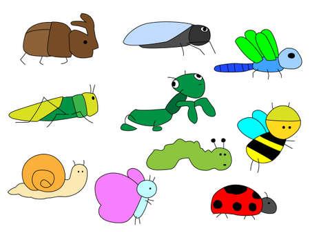 cicada: Insect icon Illustration