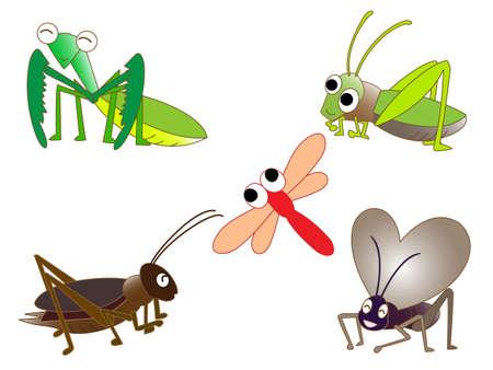 秋の昆虫  イラスト・ベクター素材