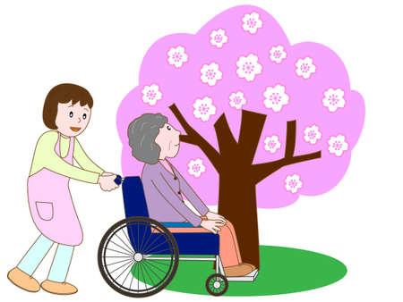 ageing: Care for elderly enjoying seeing cherry blossom