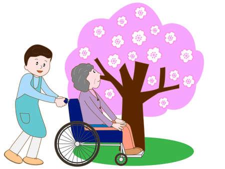 Care for elderly enjoying seeing cherry blossom