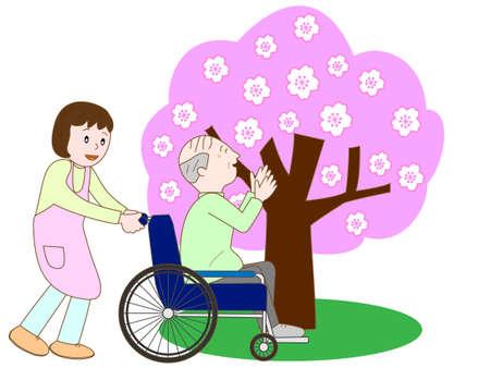 pflegeversicherung: �ltere genie�en sehen Kirschbl�te