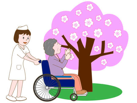 nursing care are for seniors: Elderly patient and the cherry blossoms.