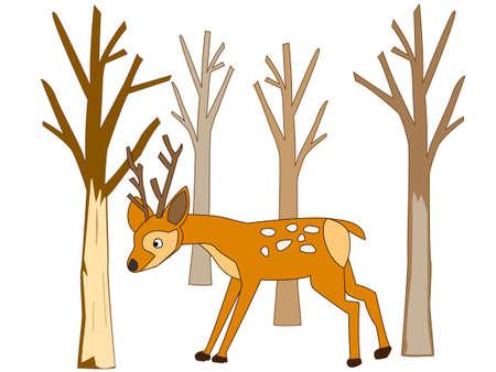 Predation by deer 向量圖像