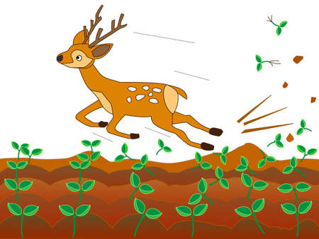 germination: Deer ravaging farms Illustration