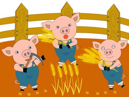 piglets: Farmer piglets