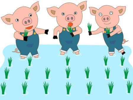 piglet: Piglet planting