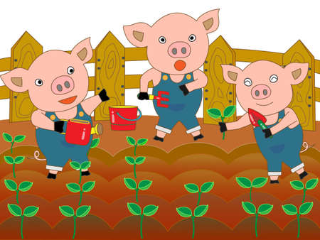 wakaba: Pig farming