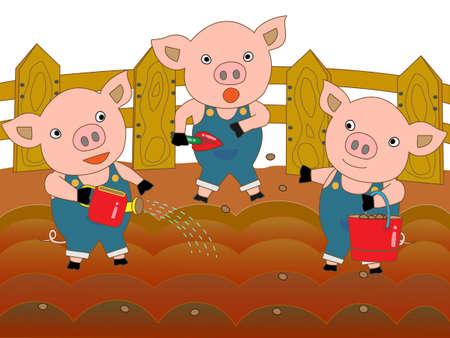 sow: Sow piglet
