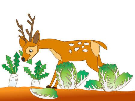 Deer voracious crops.