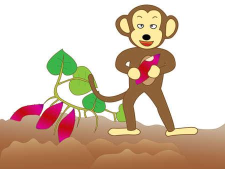 voracious: Monkey voracious crops.