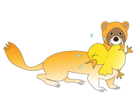 Weasels eat chickpeas