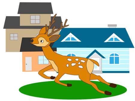 Deer illustration Illustration