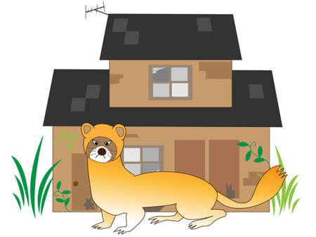 スカンクと茶色の家、白い背景で隔離。