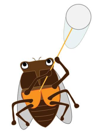 Cicada insect 向量圖像