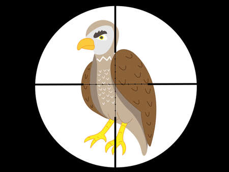 Shoot the Hawk with a gun vector illustration. Illustration