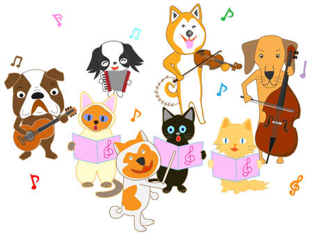 Concert for cats and dogs
