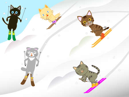 Cat skiing.