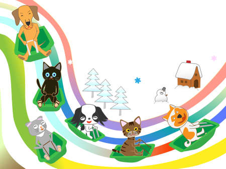Our pets  winter sports