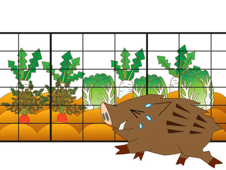 Defend the damage to crops from pest-free wild boar, have put up a fence.
