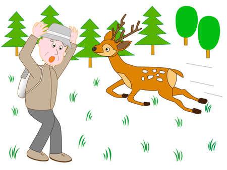 Maschio incontro cervo sorpreso durante la salita.