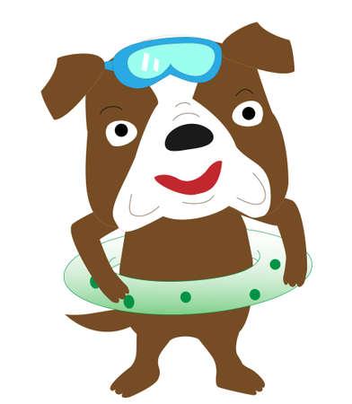 Fun swimming of the dog.