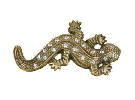 brooch with lizard on white background photo