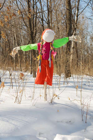 stuffed carnival to carnival in the winter forest