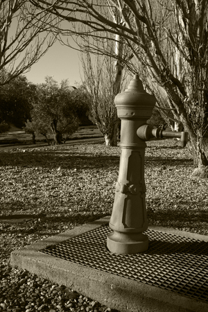 A fountain in the park