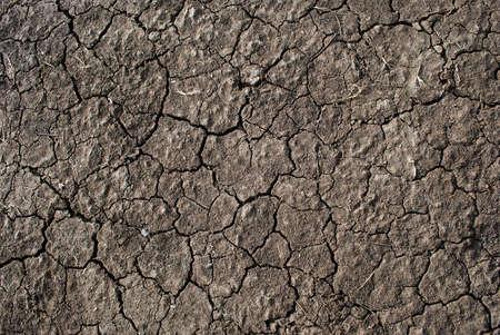 The dry ground Stock Photo - 7234974
