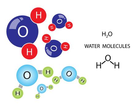 Water molecule consists of 2 hydrogen and 1 oxygen Vector