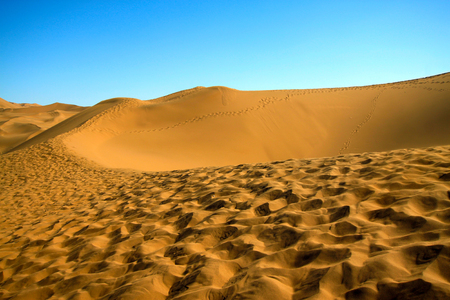 dune: The ridge of the dune