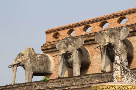 ancient elephant: Elephant statues decorated on the wall of the ancient temple in Chiangmai, Thailand
