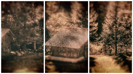 triptico: Paisaje de otoño Tríptico fotografía
