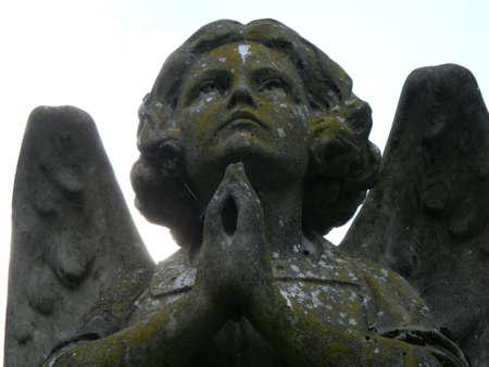 close up shot of Angel praying photo