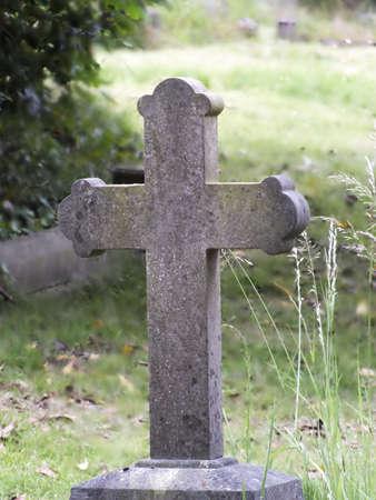 singular: Singular Cross