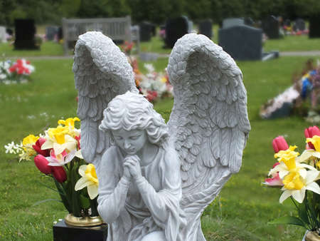 angel cemetery: praying angel in a cemetery