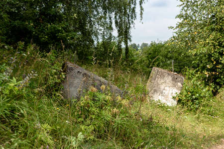 Two concrete blocks lying in the forest