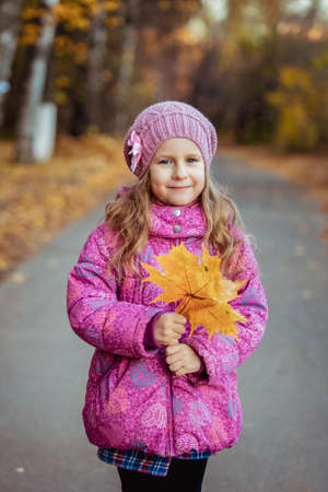 Little girl on a walk on a sunny autumn day holding orange maple leaves in her hands and smiling. Outdoor. Portrait Banco de Imagens