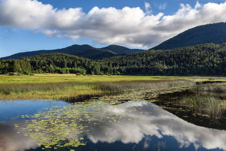 intermittent: Beautiful cloudscape reflection in intermittent lake at Cerknica, Slovenia. Stock Photo