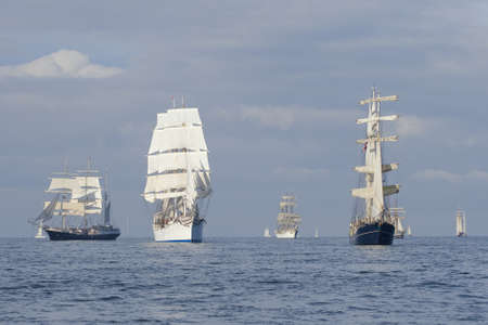 topsail: Several tall ships in a row before start a regatta