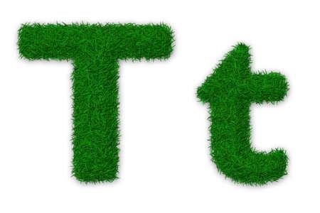 Illustration von Kapital-und Kleinbuchstaben T aus Gras