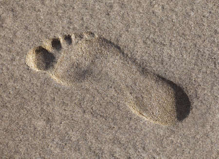 Footprint in the wet sand, view from above photo