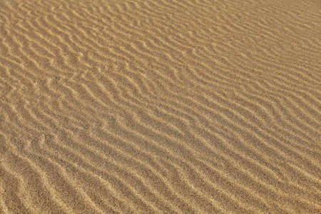 diagonale: Texture of sand rippled with the wind