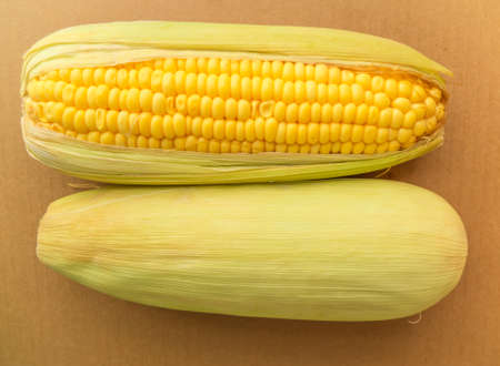 shucked: Ear of corn with husk. Isolated on brown.