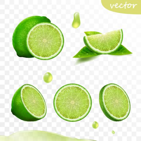 realistic vector set of elements, whole lime, sliced lime, drop lime oil, leaves 일러스트