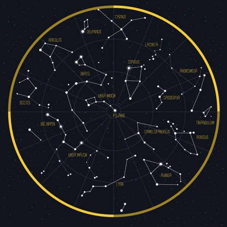 Night Sky with Constellations. Vector illustrations.